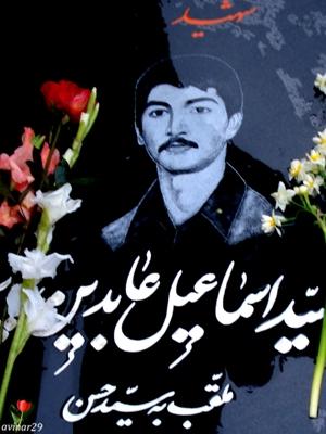 سید حسن